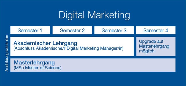 Grafik Ausbildungsvarianten Digital Marketing LDM