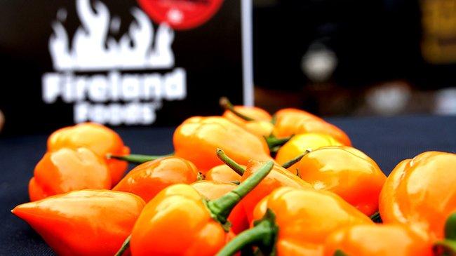 Fireland Foods GmbH - die Chilierlebniswelt