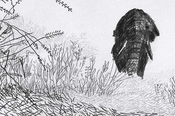 The Outlander - Animationsfilm von Ani Antonova Hristova