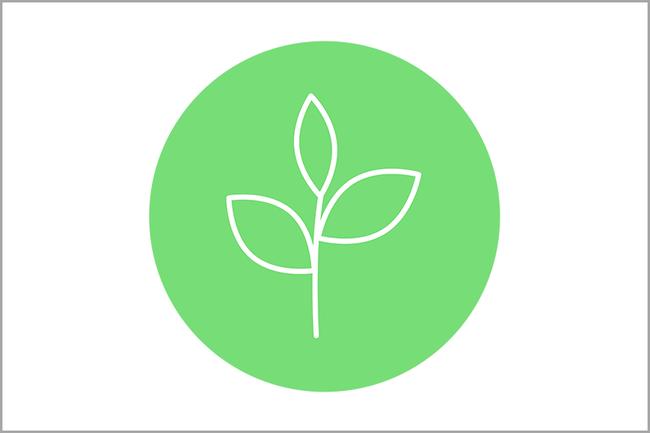 Ein grünes Blatt, das Nachhaltigkeits Icon der FH St. Pölten