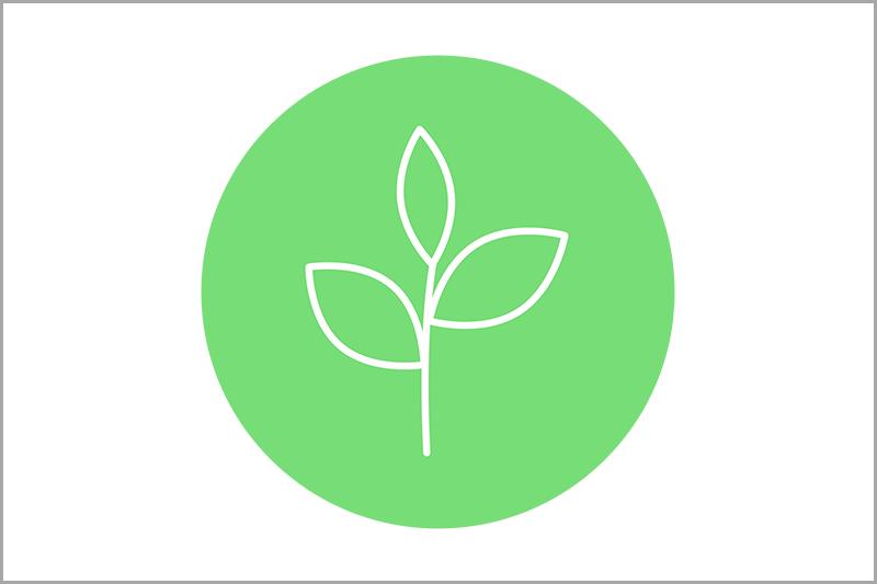 Green Leave